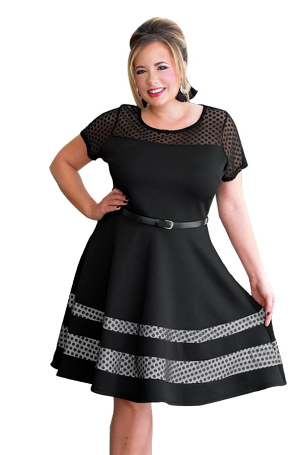 e50d30cd674 Black Dotted Mesh Insert Flare Plus Size Dress with Belt