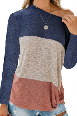 Blue Color Block Crew Neck Blouse